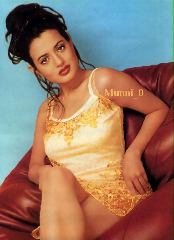 Beautiful Amisha Patel Glamour Look Pics