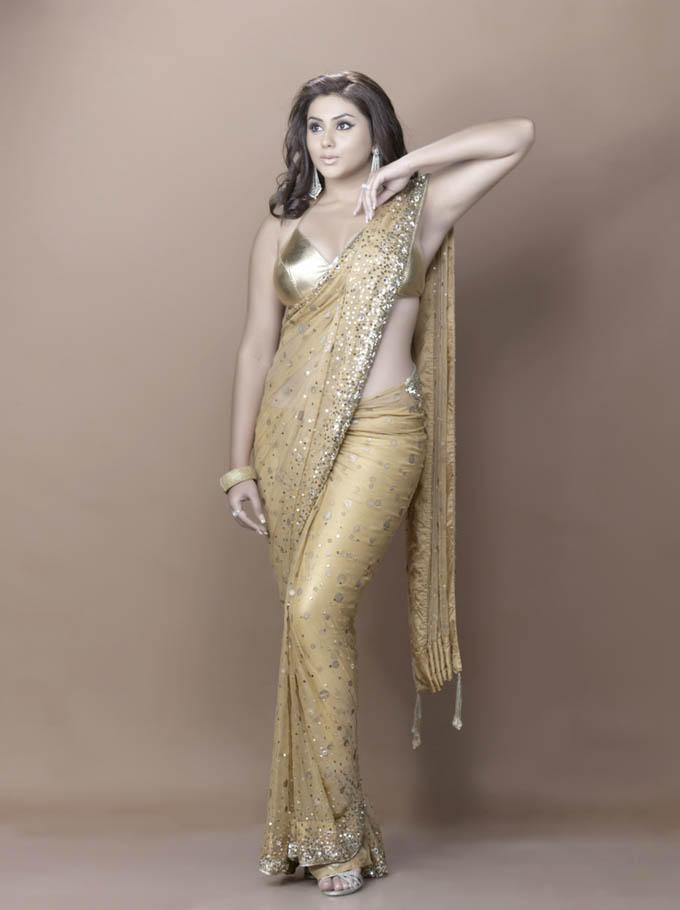 Namitha Sexy Pose In Golden Color Saree