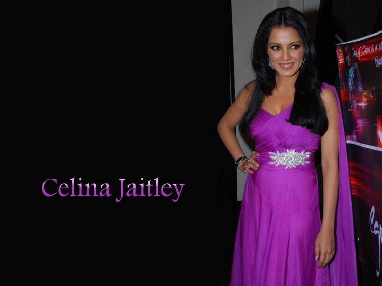 Celina Jaitley Hot Wallpaper In Magenta Color Dress