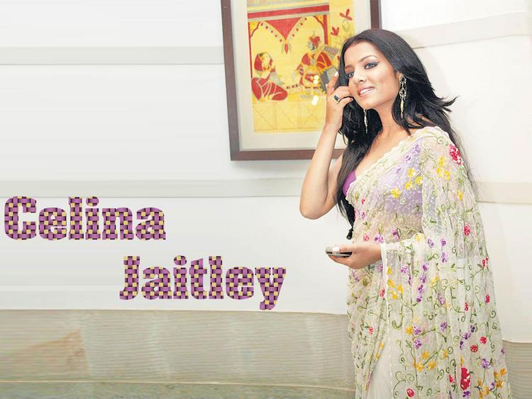 Celina Jaitley Latest Wallpaper In Saree