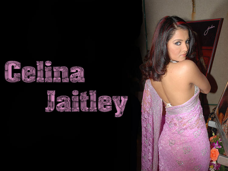 Celina Jaitley Sexy Back Bare Still