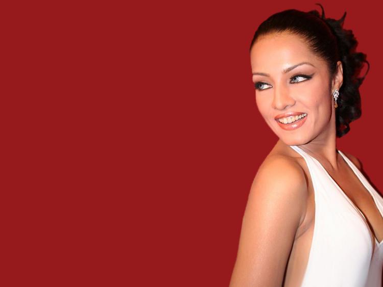 Cute Smile Look Pic Of Celina Jaitley