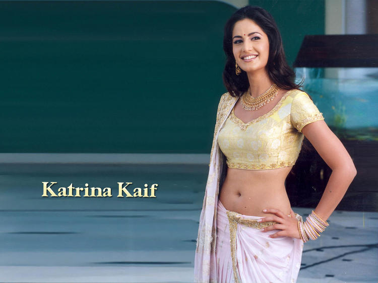 Katrina Kaif Spicy Navel Exposing Wallpaper