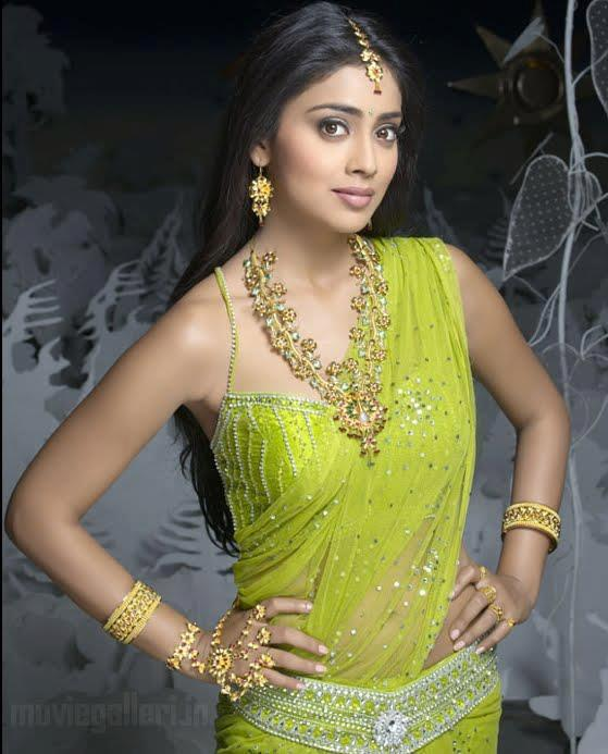 Shriya Saran Cute Sexy Look Photo Still In A Transparent Saree