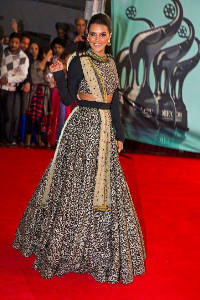 Neha Dhupia Stylish In Red Carpet At TOIFA 2013