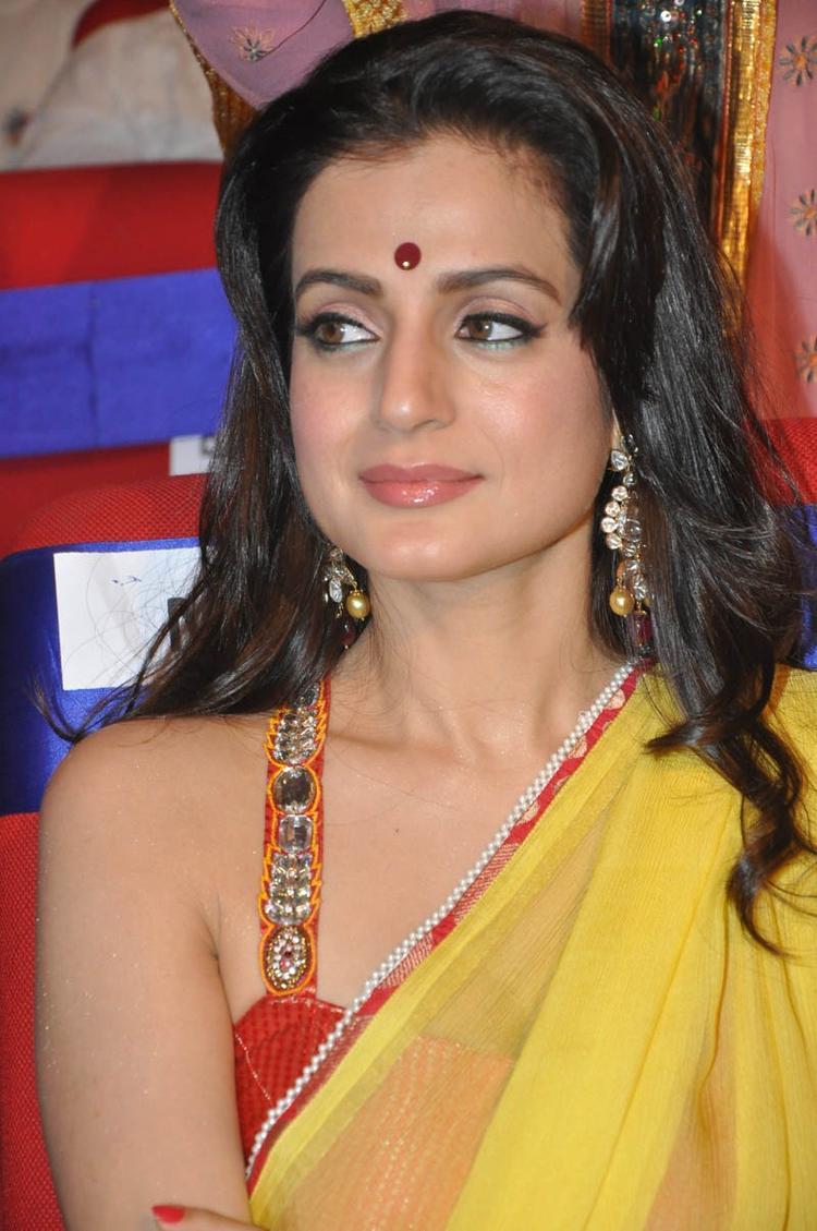 Ameesha Patel Beautiful Face Look At TSR TV9 Film Awards Function