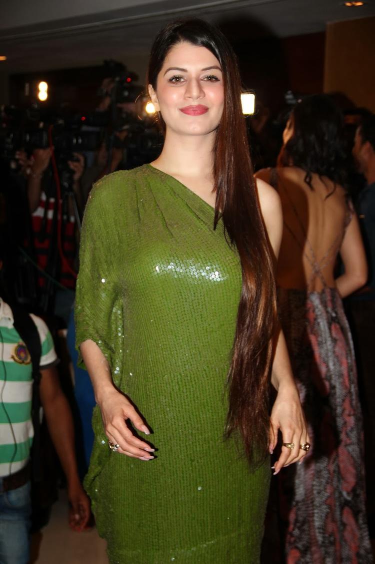 Kainaat Arora Wore A Beautiful Gown At Grand Masti 100 Crores Making Bash