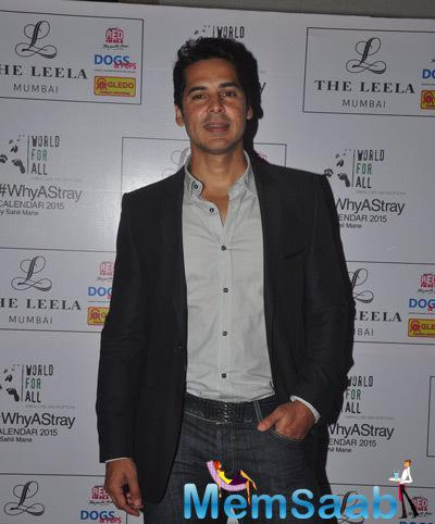 Dino Morea Launched Shail Mane Why A Stray Calendar