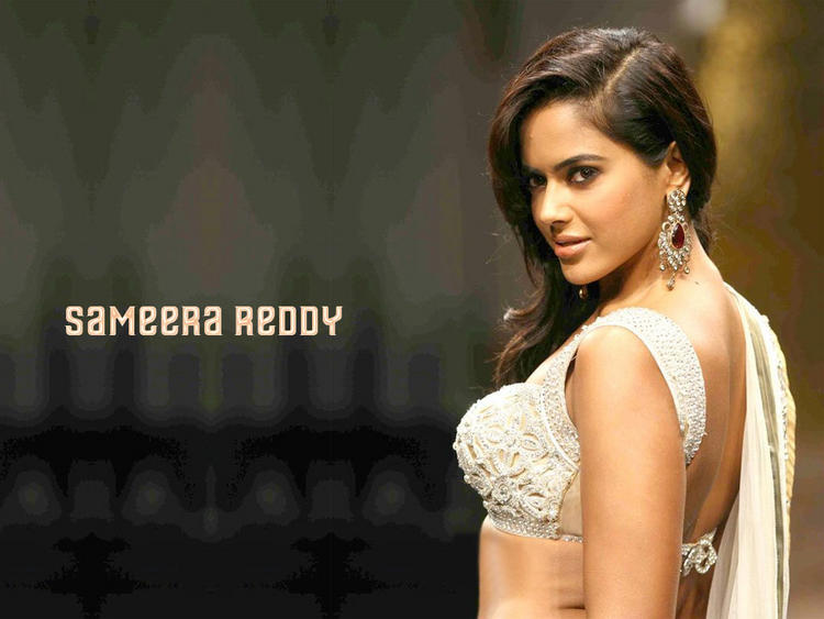 Sameera Reddy Gorgeous Face Wallpaper