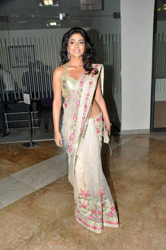 Shriya Saran Sexy Saree Gorgeous Pic