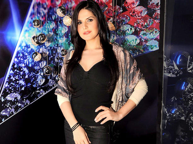 Zarine Khan Sexy Pose Photo Shoot