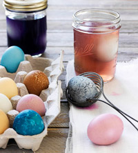 Dyeing eggs with all-natural dye