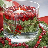Cranberry Crafts