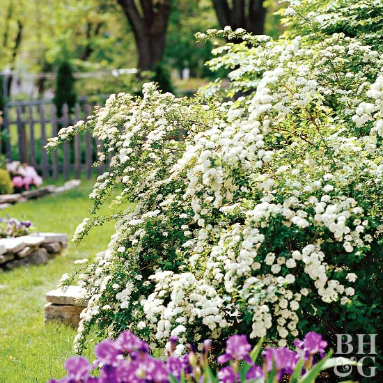 Better Homes And Gardens Recipe Ideas