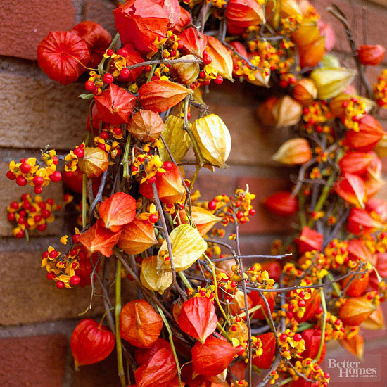 Bright Bittersweet Wreath