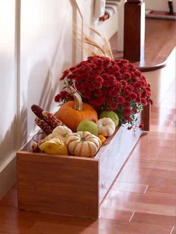 Pack & Ship Autumn Favorites