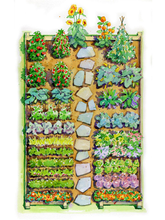 Easy Children's Vegetable Garden Plan on Backyard Layout Planner  id=42790
