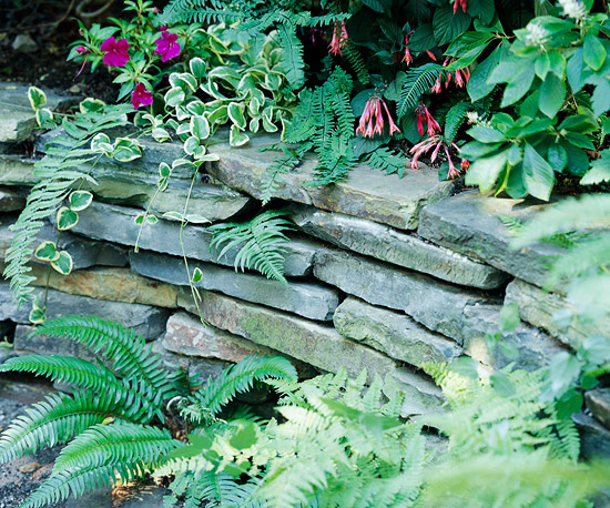 Support a Terraced Site