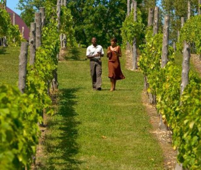 Things To Do In Door County Wineries