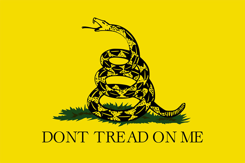 historical significance meaning behind gadsden flag survival prepper blog