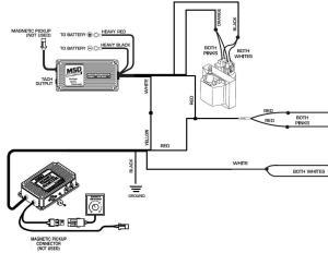 6 BTM GM Dual Connector  MSD Blog