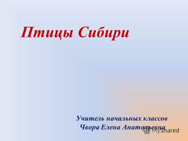 Описание животных из красной книги россии с фото - Лёгкие ...