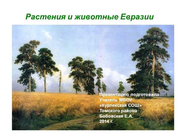 """Презентация на тему: """"Растения и животные Евразии ..."""