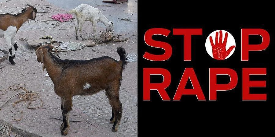 Man attempts to 'rape' goat in West Bengal, beaten up: Police- The New  Indian Express