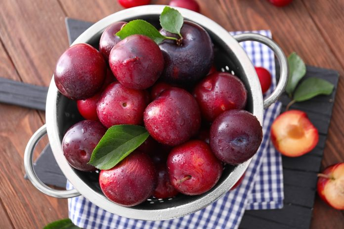 Plums protect from many serious diseases, definitely consume it in summer