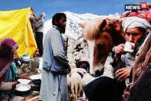 Walking With a Bakarwals, Through Jammu and Kashmir With a Nomads