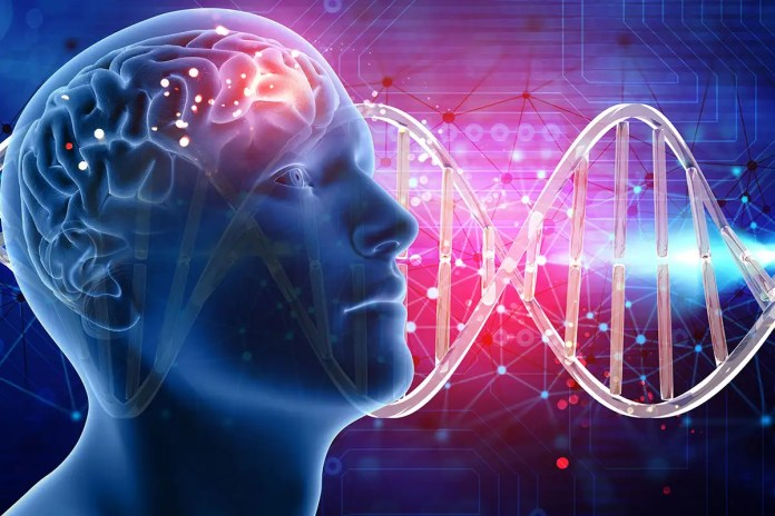 Found: more than 500 genes that are linked to intelligence | New Scientist