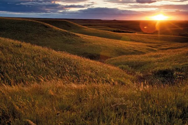 Unearthed! The missing Native American city on the Great ...