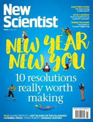 New Scientist issue 3211 cover