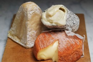 The truth about cheese: The terrible costs of our favourite food