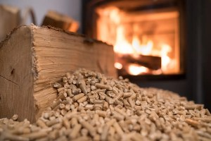 EU sued for making global warming worse by subsidising wood burning