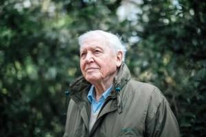 David Atternborough
