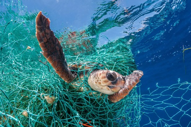 Huge amounts of abandoned fishing gear litter the world's oceans | New Scientist