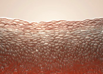 Electrified artificial skin can feel exactly where it is touched