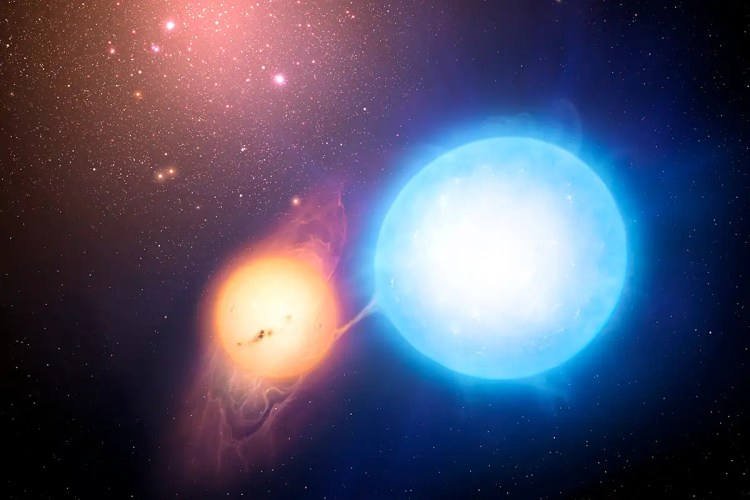 Supermassive stars may have formed by repeatedly eating their siblings