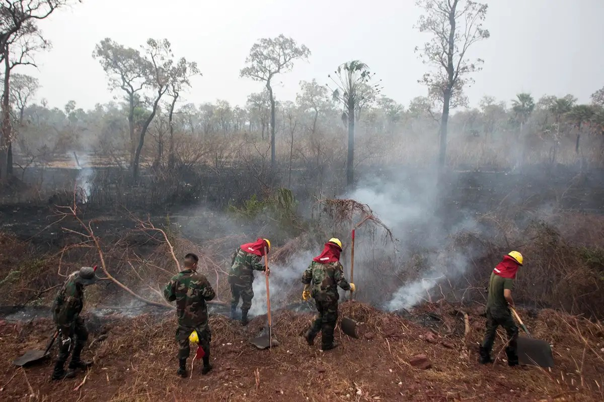 Major fires hit the Amazon and the Arctic for the second year in a row