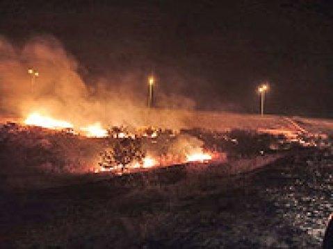 Сильный пожар около Эльада взят под контроль, выгорела территория площадью около 15 кв. км