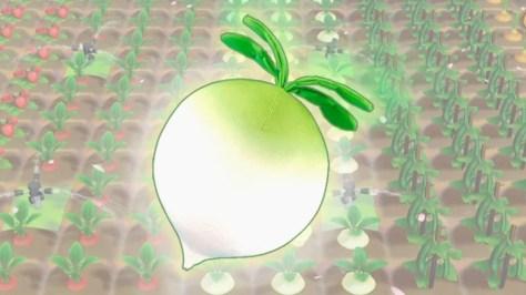 I... love the big turnip...