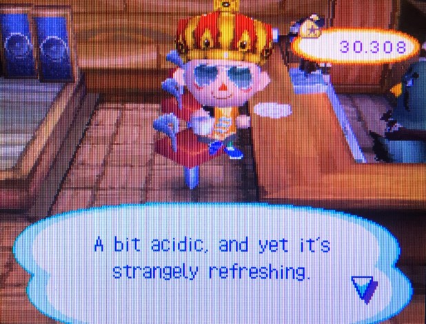 Wild World Cafe from Animal Crossing