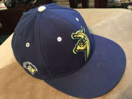 Image result for savannah bananas hat