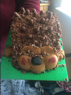 My hedgehog cake [ok]