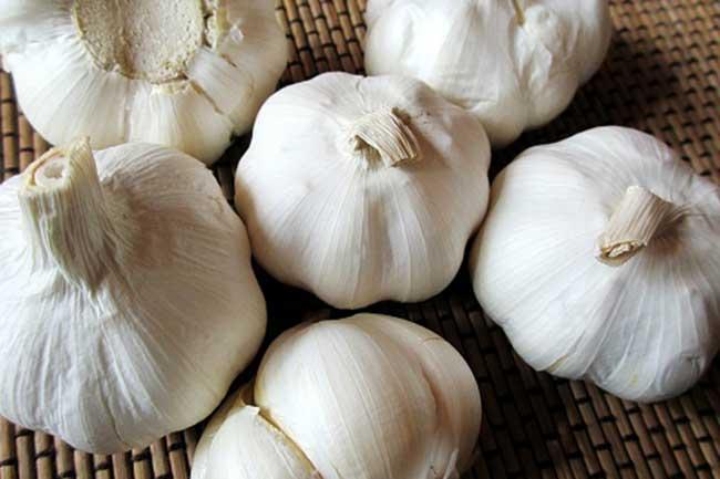 लहसुन (Garlic)