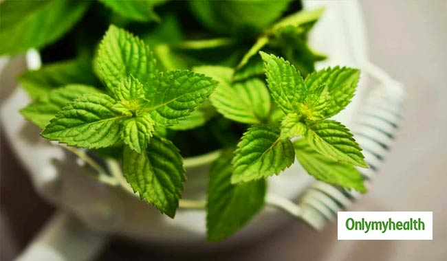 Five Reasons to Add Peppermint to Your Diet