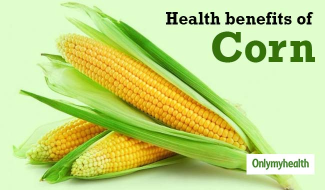 Is Corn Healthy for You? 6 Benefits You Should Know