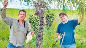 Los ingenieros agrónomos Diego Wassner y Antonio Barrio, de la cátedra de Cultivos industriales UBA.
