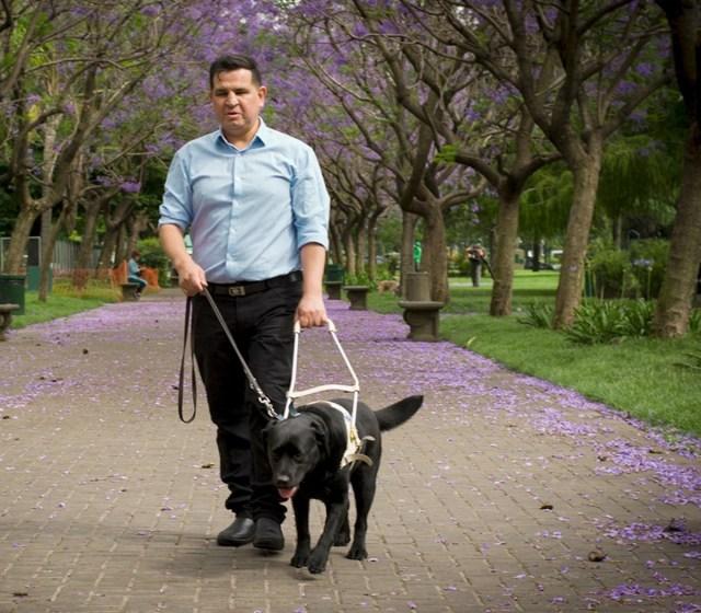 Quién es Fernando Galarraga, el primer ciego al fre... | Página12 Solá recibió al Director Ejecutivo de la Agencia Nacional de Discapacidad, Fernando Galarraga